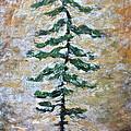 Skinny White Pine by Lisa Masters