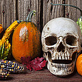 Skull And Gourds by Garry Gay