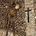 Skull Church by Michael Cinnamond