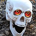 Skull Halloween Card by Debra     Vatalaro