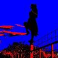 Sky Dancer by Chris Berry