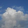 Sky Of Wonder by Sheila Silverstein