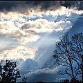 Sky by Sheri Bartoszek