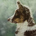 Skye by Lorraine McFarland