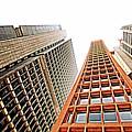 Skyscrapers by Luiz Felipe Castro