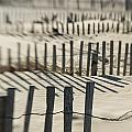 Slats Of Wooden Fence Throwing Shadows by Helene Cyr