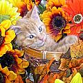 Sleepy Kitty Cat In A Fall Flower Basket With Gerbera Daisies And Autumn Sunflowers Looking Out by Chantal PhotoPix