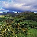 Slieve Bearnagh, Mourne Mountains, Co by The Irish Image Collection