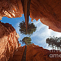 Slot Canyon by Greg Dimijian
