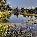 Slow Snake River by Paul Cannon
