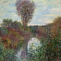 Small Branch Of The Seine by Claude Monet