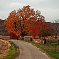 Small Country Road by Randall Branham