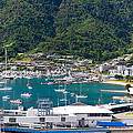 Small Idyllic Yacht Harbor  by U Schade