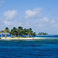 Small Palm Tree Covered Islands In Blue by Wolcott Henry