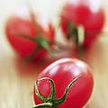 Small Tomatoes by Elena Elisseeva