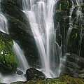Small Waterfall Near The Milford Track by Mark Cosslett