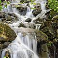 Small Waterfalls And Brook West Bolton by David Chapman