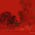 Smokey Woods by Ericamaxine Price
