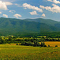 Smoky Mountain Panorama by Cindy Haggerty