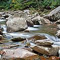 Smoky Mountain Streams by Angie Schutt