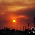 Smoky Sun2 by Anjanette Douglas