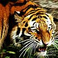 Snarling Tiger by Darleen Stry