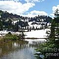 Snow At Tipsoo Lake by Charles Robinson