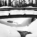 Snow Bridge In Canadian Rockies by Darcy Michaelchuk