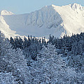 Snow Covered Mount Currie From Whistler by Pierre Leclerc Photography