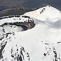 Snow-covered Ngauruhoe Cone, Mount by Richard Roscoe
