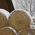 Snow Dusts Rolls Of Hay by Mattias Klum