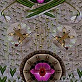 Snow Flowers And Orchids In Heavenly Wisdom by Pepita Selles