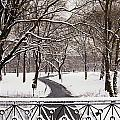 Snow In Central Park by Axiom Photographic