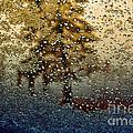Snow On My Window by Ellen Heaverlo