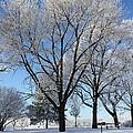 Snow Seat by Bryan Noll