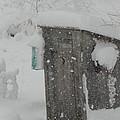 Snow Storm In The Country by Kim Galluzzo Wozniak