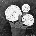 Snowball Plant B W by Barbara Griffin