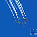 Snowbirds At Airshow by Randy Harris