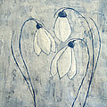 Snowdrops by JG Keevil