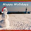 Snowman With Santa Hat by Lloyd Alexander