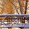 Snowy Autumn Walking Bridge by James BO  Insogna