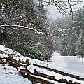 Snowy Fence by Debra and Dave Vanderlaan