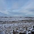 Snowy Field by Allan Somerville