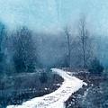 Snowy Foggy Rural Path by Jill Battaglia