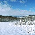 Snowy Hill by Jan W Faul