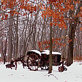 Snowy Implement by Ed Golden