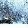 Snowy Morn by David Milliner