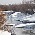 Snowy River by Lucy Bounds