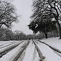 Snowy Road by Amy Hosp