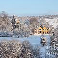Snowy Scene In England by Mark Taylor